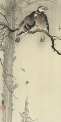 Two Gray Sparrows by Ohara Koson 1900 1936 Japanese Woodblock
