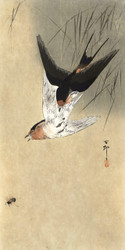 Two Peasant Swamps in Dive by Ohara Koson and Matsuki Heikichi Japanese Woodblock