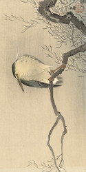 Wake Up to the Rooftop Branch by Ohara Koson and Akiyama Buemon Japanese Woodblock