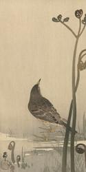 Water Bird by Ohara Koson and Akiyama Buemon Japanese Woodblock