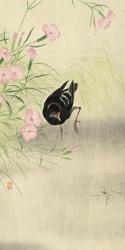 Waterhen at Blooming Plant by Ohara Koson Japanese Woodblock