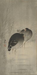 Waterhens Between Reeds by Ohara Koson and Matsuki Heikichi Japanese Woodblock