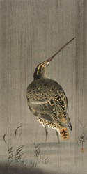 Watersnipe in the Rain by Ohara Koson Japanese Woodblock