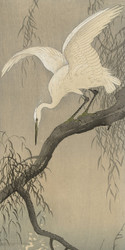 White Heron on Tree Branch by Ohara Koson and Akiyama Buemon Japanese Woodblock