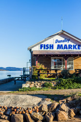 Dunalley Fish Market with Dog (P) by Andrew Wilson Seascape Print