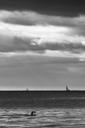 Passing to Port by Andrew Wilson Seascape Print