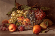 Autumn Fruit By Stoeklein Floral Print