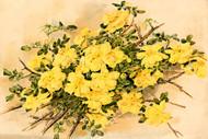 Flowers Of Memory Ii By Elizabeth H Remington Floral Print
