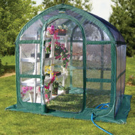 6 x 6 ft. Green and Clear Polyethylene Greenhouse FSPG19647