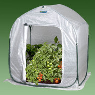 Plant-House Home Garden Cold Frame Style Greenhouse (3' x 3') WFPH3FT41