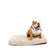 4-inch thick Memory Foam Orthopedic Medium size Dog Bed BSMP49143