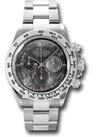 Rolex Watches: Daytona White Gold - Bracelet 116509 dkmr