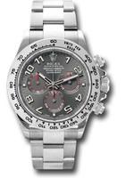 Rolex Watches: Daytona White Gold - Bracelet 116509 gra