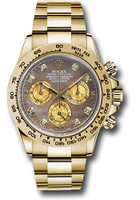Rolex Watches: Daytona Yellow Gold - Bracelet 116508 dkmd