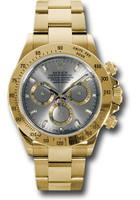 Rolex Watches: Daytona Yellow Gold - Bracelet 116528 gs