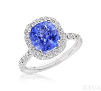 Ziva Cushion Cut Sapphire Ring with Halo & Eternity Shank