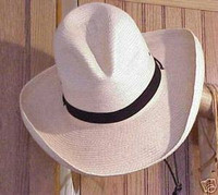 """SunBody Palm 4"""" Gus Cowboy Hat"""
