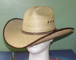 3c9aec8f4 Jason Aldean Hicktown Palm Cowboy Hat - One 2 mini Ranch