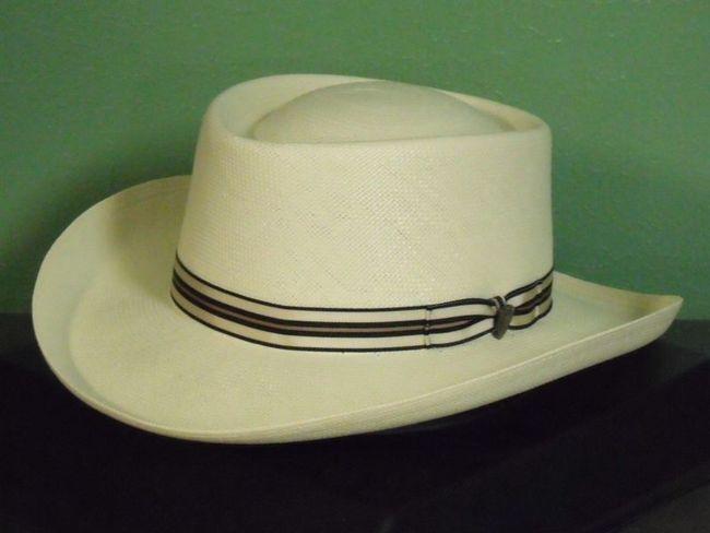 5ce45f4bb652c Dobbs Kingston Shantung Panama Fedora Hat - One 2 mini Ranch
