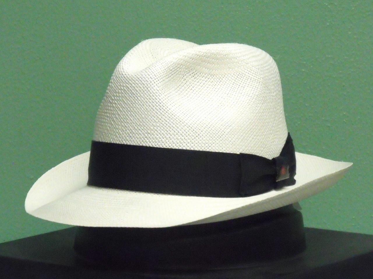 a1de21d13f768 Biltmore Havana Genuine Panama Straw Fedora Hat - One 2 mini Ranch