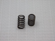 Arctic Cat High RPM Valve Springs (2009 & OLDER ONLY)