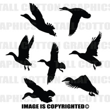 ducks black vinyl decal