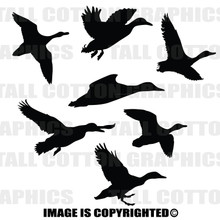 ducks black vinyl decals