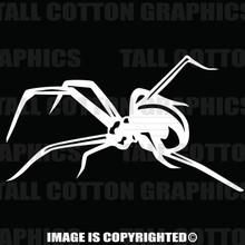 White spider decal