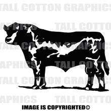 black angus Bull black decal