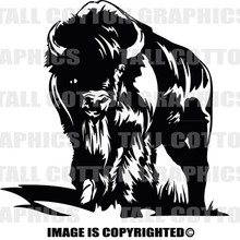 bison black decal