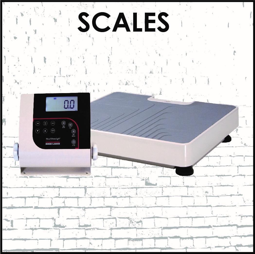 2017-scales.jpg