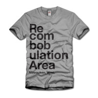 Recombobulation Area t-shirt grey