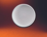 """DOME89____CEILING DOME 89"""" diameter"""