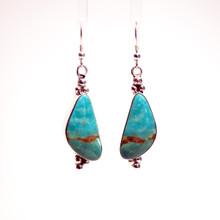 Kingman Turquoise Earrings 170