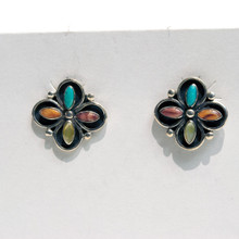 Multi Color  Post Earrings