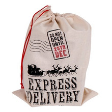 Express Delivery Christmas Sack 67x50cm