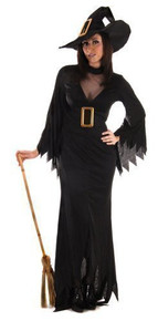 Adults Plus Size Best Dressed Halloween Scary Evil Black Witch Fancy Dress Costume