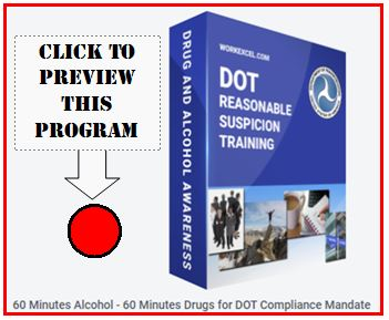 Preview button for seeing the full DOT PowerPoint Program on Reasonable Suspicion with Voice Narration