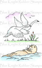 Swans and Otter