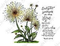 Delightful Dandelions
