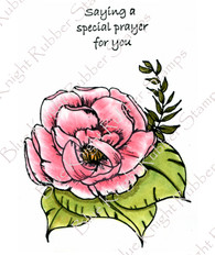 Prayer, Flower