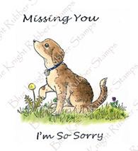 Sorrowful Pup