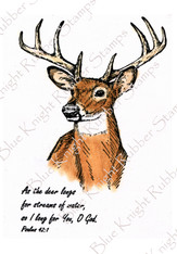 Regal Buck