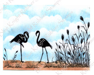 Flamingos and Wild Grass