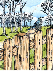 Bird and Fence