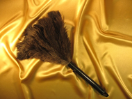 Premium Retractable Feather Duster open