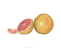 Watercolor Grapefruit