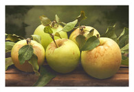 Jill's Green Apples I
