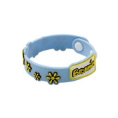 Brownies Wristband