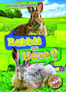 Rabbit or Hare? by Christina Leaf, 9781644870358